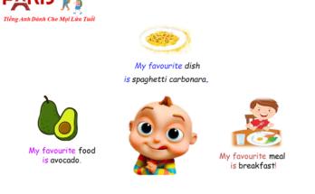 food-va-meal